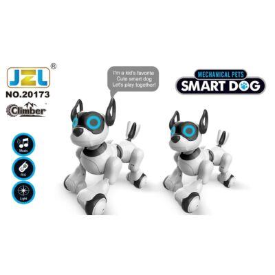 Intelligens RC távirányítós robot kutya