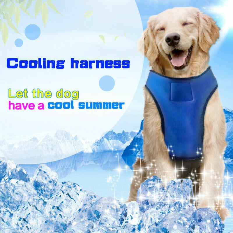 Speciális hűtőhám kutyáknak