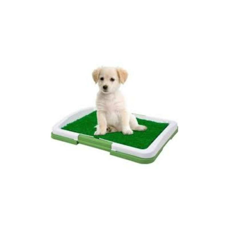 Potty Trainer kutya toalett WC, alomtálca