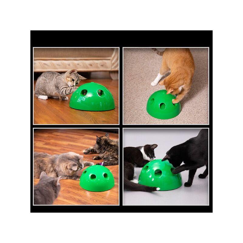 Interaktív macskajáték - Kapd el az egeret!